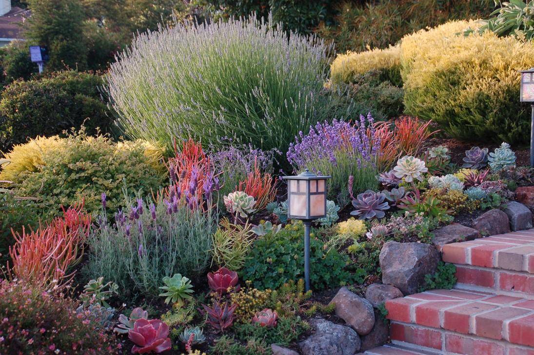сад в средиземноморском стиле фото